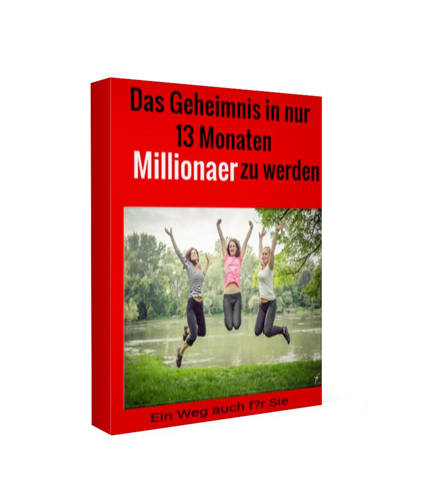 in 13 Monaten Millionaer